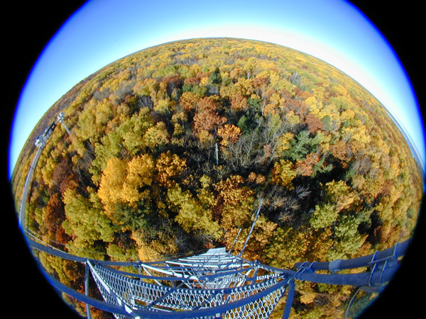 fish_eye_fall_GB_web