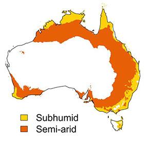 semi-arid