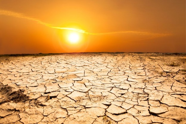 100% of NSW is now in drought (NSW DPI)