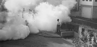 Children play in the DDT fog left by the 'fog truck' in a New Jersey neighbourhood. George Silk/LIFE 1948