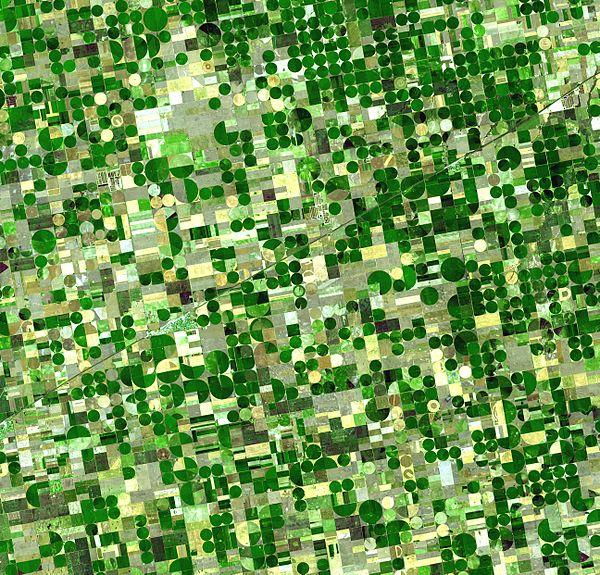 crops_kansas_ast_20010624