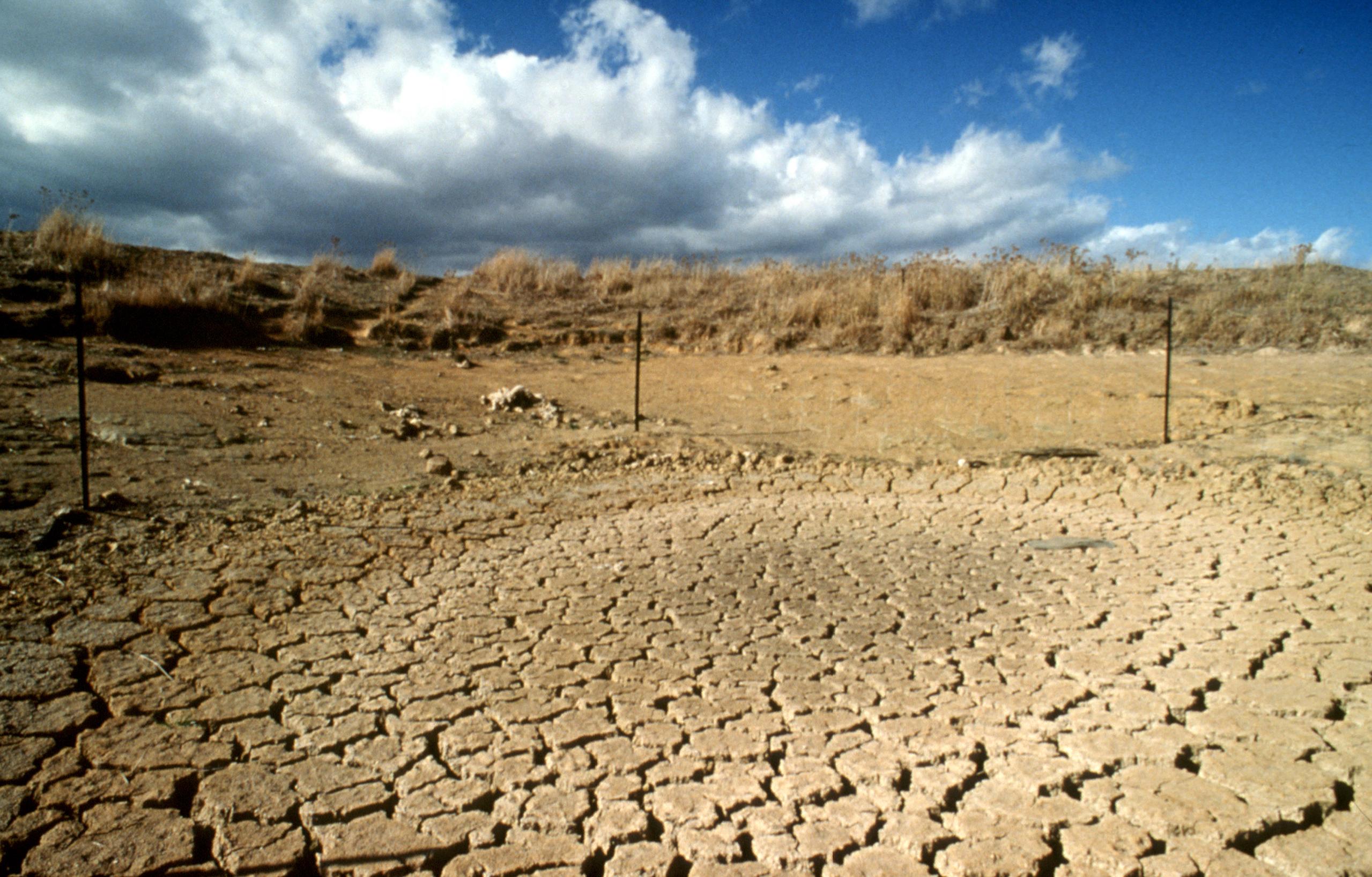 Drought-stricken dam (source: Plant Industry)