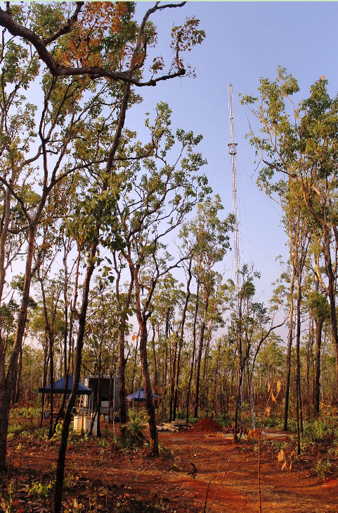 Litchfield National Park flux tower, Northern Territory.