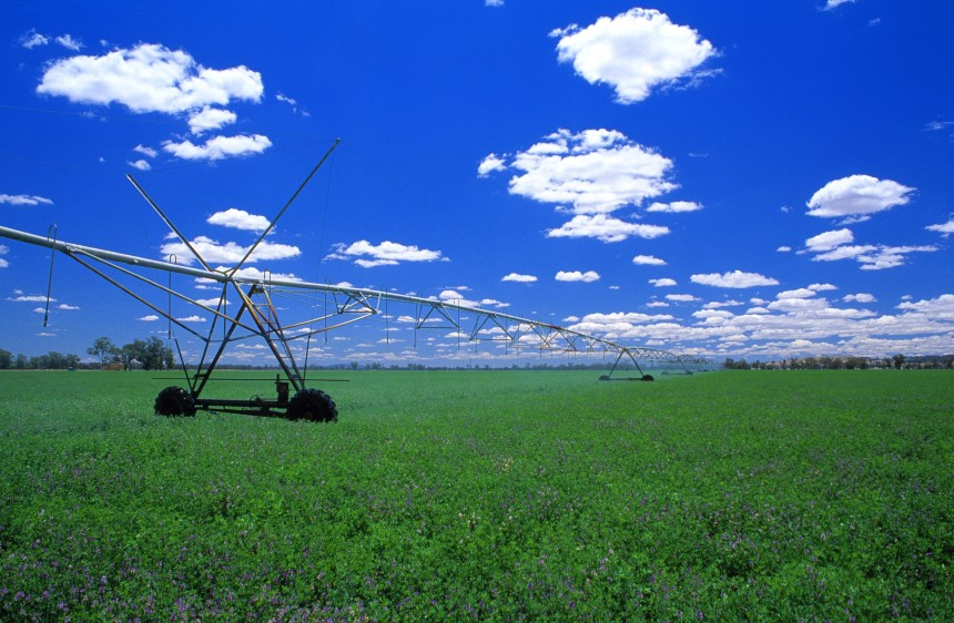 Irrigation spray boom in lucerne crop near Albury, NSW. (Source:  Gregory Heath, January 01 2001.)