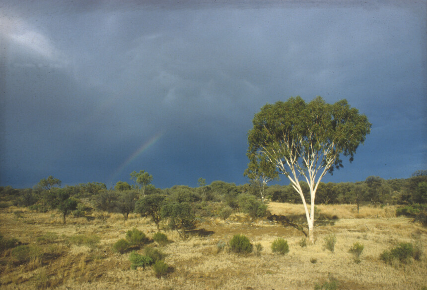 A rainbow forms and storm clouds gather over an outback scene, north of Alice Springs, Northern Territory. November 1989. (Source: Robert Kerton)