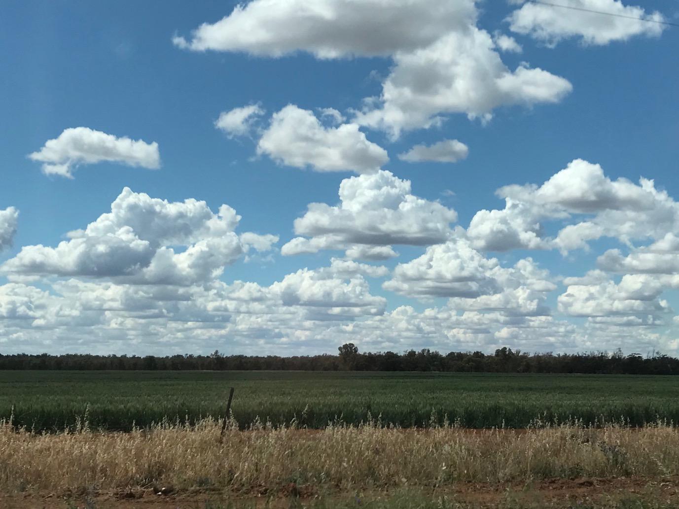 Crop_clouds